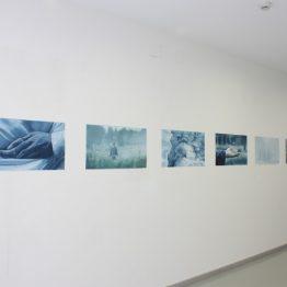 Exposición Indigo Vista 2