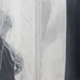 _Between tones of gray V_, oil on polyester, 50 x 70 cm, Jose Antonio Ochoa